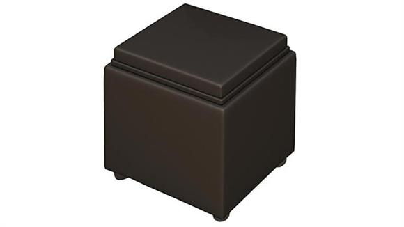 Ottomans Mayline Leather Storage Ottoman