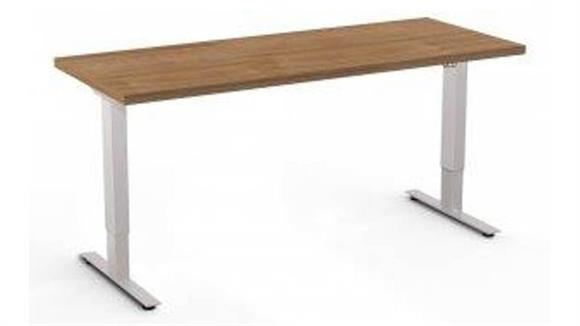 "Adjustable Height Tables Special T 48"" x 24"" Adjustable Height Table"