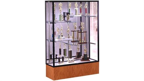 Display Cabinets Waddell Display Case with Mirror Back