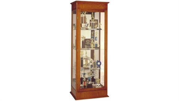 Display Cabinets Waddell Display Cabinet with Hinged Door